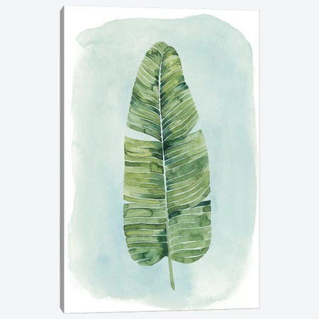 Paradise Palm Leaves IV Canvas Print #POP246} by Grace Popp Canvas Art Print
