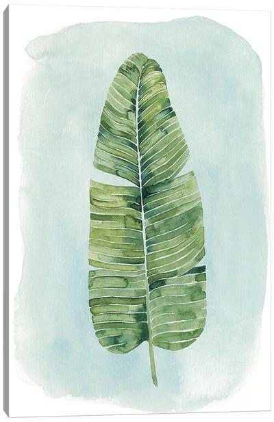 Paradise Palm Leaves IV Canvas Print #POP246