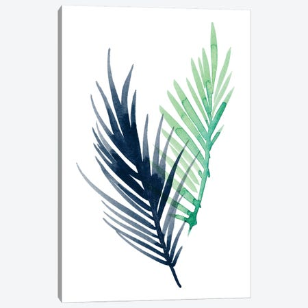 Untethered Palm III Canvas Print #POP272} by Grace Popp Art Print