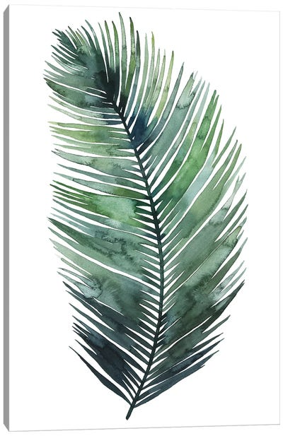 Untethered Palm VII I Canvas Art Print