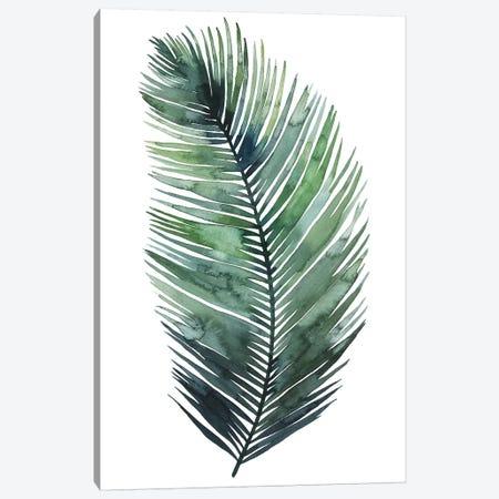 Untethered Palm VII I Canvas Print #POP274} by Grace Popp Canvas Artwork