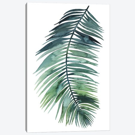Untethered Palm VII II Canvas Print #POP275} by Grace Popp Canvas Artwork