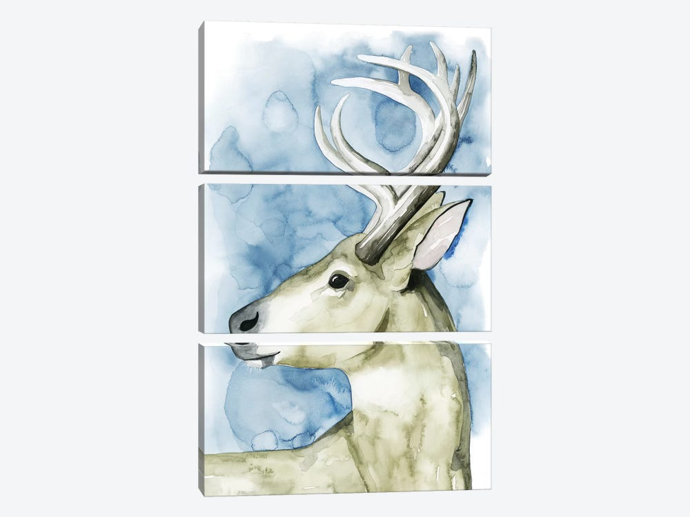 Wandering Stag I by Grace Popp 3-piece Canvas Art Print