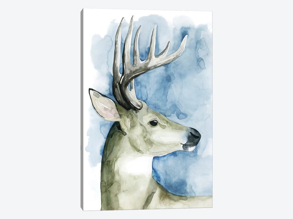 Wandering Stag II by Grace Popp 1-piece Canvas Artwork