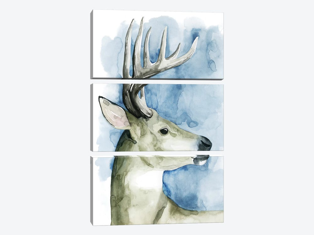 Wandering Stag II by Grace Popp 3-piece Canvas Art