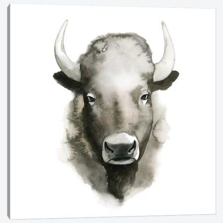 Watercolor Buffalo Canvas Print #POP287} by Grace Popp Canvas Art Print