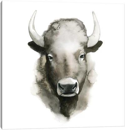 Watercolor Buffalo Canvas Print #POP287