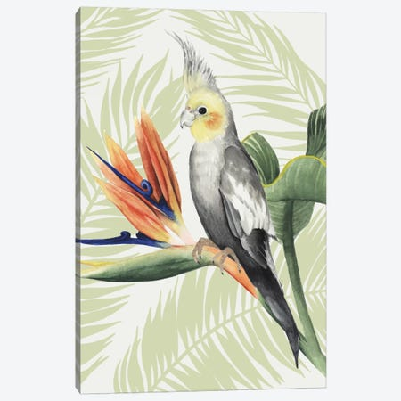 Avian Paradise I Canvas Print #POP2} by Grace Popp Canvas Wall Art