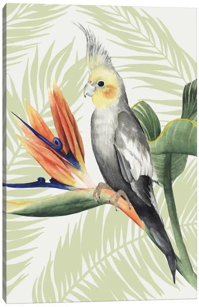 Avian Paradise I Canvas Art Print