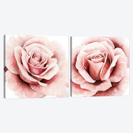 Pink Rose Diptych Canvas Print Set #POP2HSET011} by Grace Popp Canvas Print