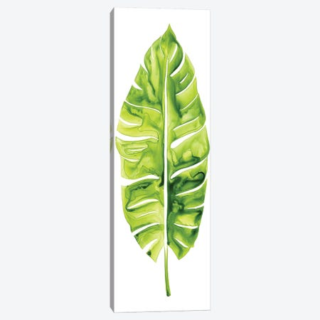 Banana Leaf Study I Canvas Print #POP306} by Grace Popp Canvas Wall Art