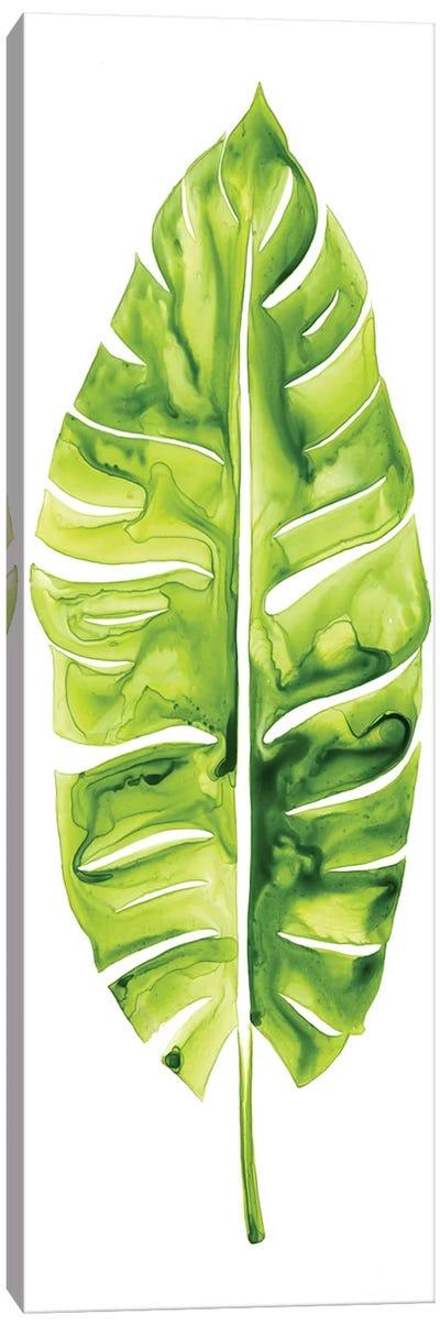 Banana Leaf Study I Canvas Art Print