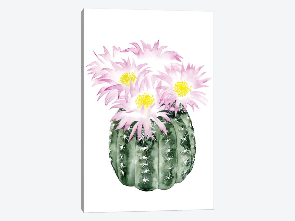 Cactus Bloom I by Grace Popp 1-piece Canvas Print