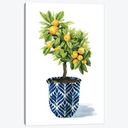 Fruit Tree I Canvas Print #POP338} by Grace Popp Canvas Art