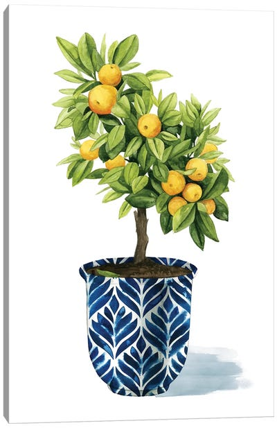 Fruit Tree I Canvas Art Print