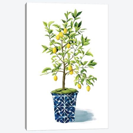 Fruit Tree II Canvas Print #POP339} by Grace Popp Canvas Wall Art