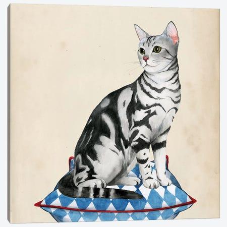Lady Cat I Canvas Print #POP344} by Grace Popp Canvas Artwork