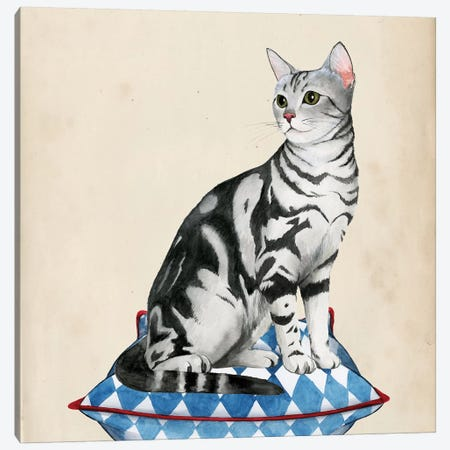 Lady Cat I Canvas Print #POP344} by Grace Popp Canvas Artwork