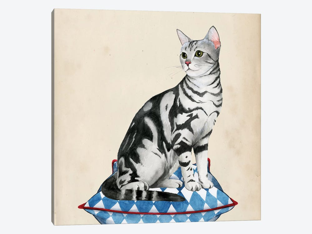 Lady Cat I by Grace Popp 1-piece Canvas Wall Art