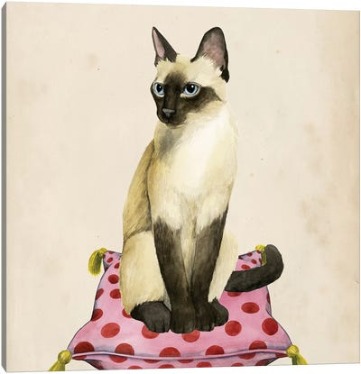 Lady Cat II Canvas Art Print
