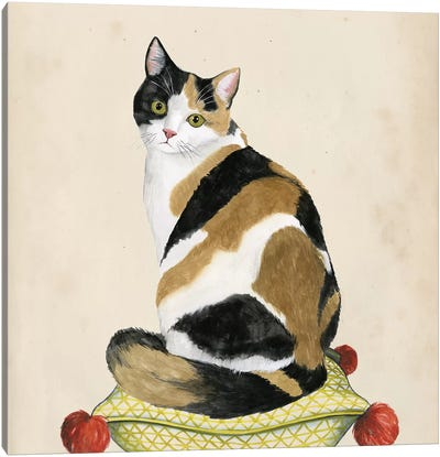 Lady Cat III Canvas Art Print