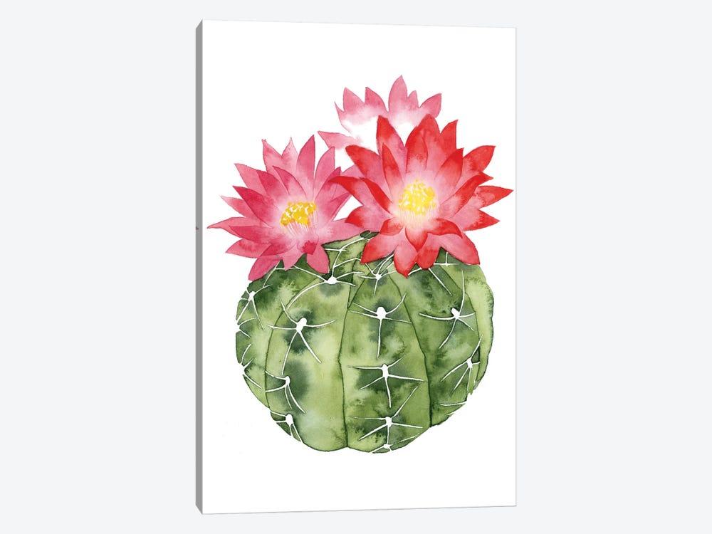 Cactus Bloom III by Grace Popp 1-piece Art Print