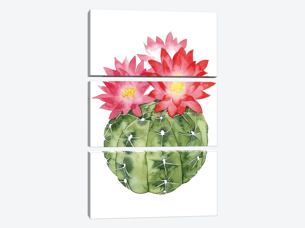Cactus Bloom III by Grace Popp 3-piece Canvas Art Print