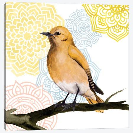 Mandala Bird II Canvas Print #POP351} by Grace Popp Canvas Artwork