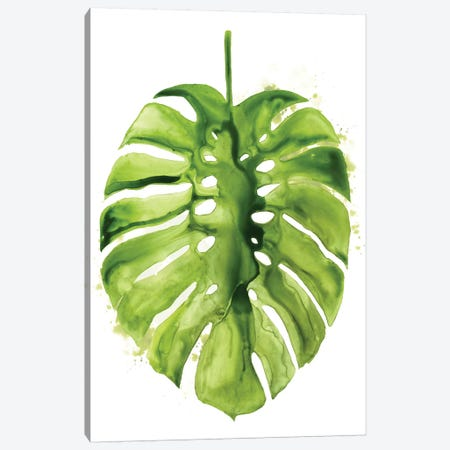 Monstera I Canvas Print #POP354} by Grace Popp Canvas Art Print