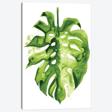 Monstera II Canvas Print #POP355} by Grace Popp Canvas Art Print