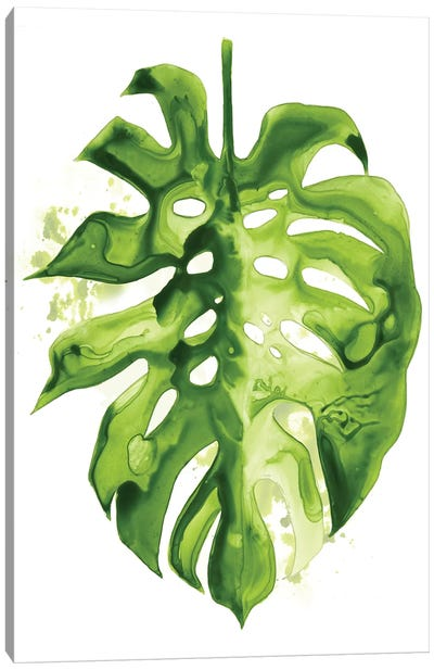 Monstera II Canvas Art Print