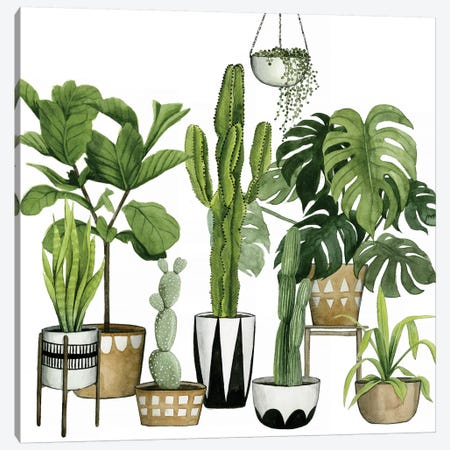 Plant Haven I Canvas Print #POP364} by Grace Popp Canvas Wall Art
