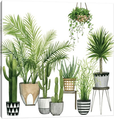 Plant Haven II Canvas Art Print