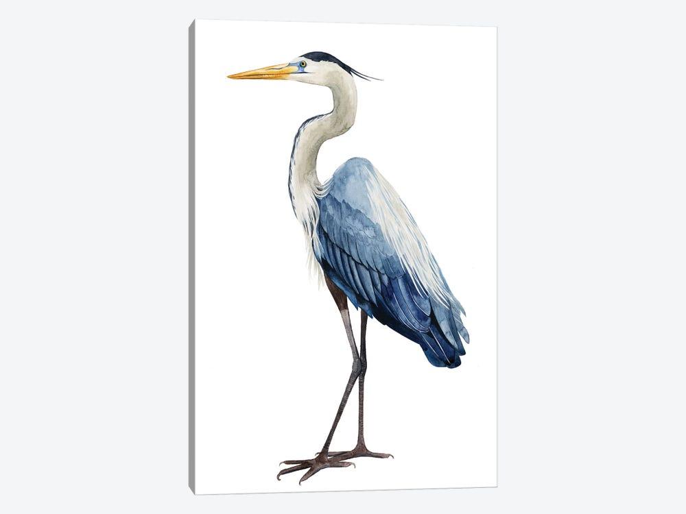 Seabird Heron I by Grace Popp 1-piece Canvas Print