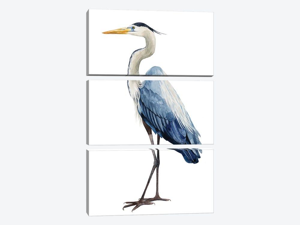 Seabird Heron I by Grace Popp 3-piece Canvas Print