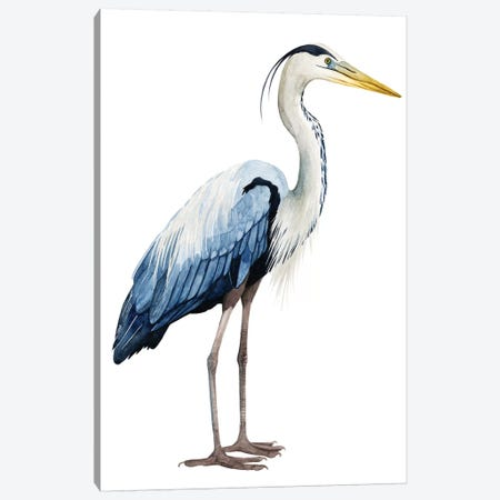 Seabird Heron II Canvas Print #POP371} by Grace Popp Canvas Artwork