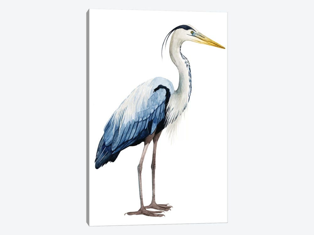 Seabird Heron II by Grace Popp 1-piece Canvas Artwork
