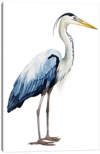 Seabird Heron II Canvas Art Print