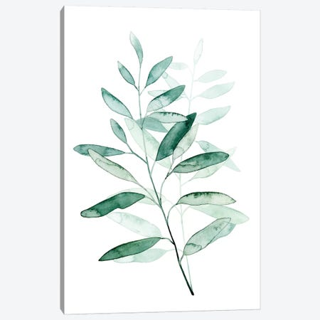 Serene Reed I Canvas Print #POP376} by Grace Popp Canvas Art Print