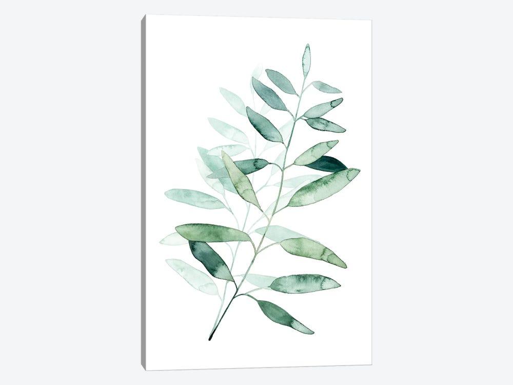 Serene Reed II by Grace Popp 1-piece Canvas Art