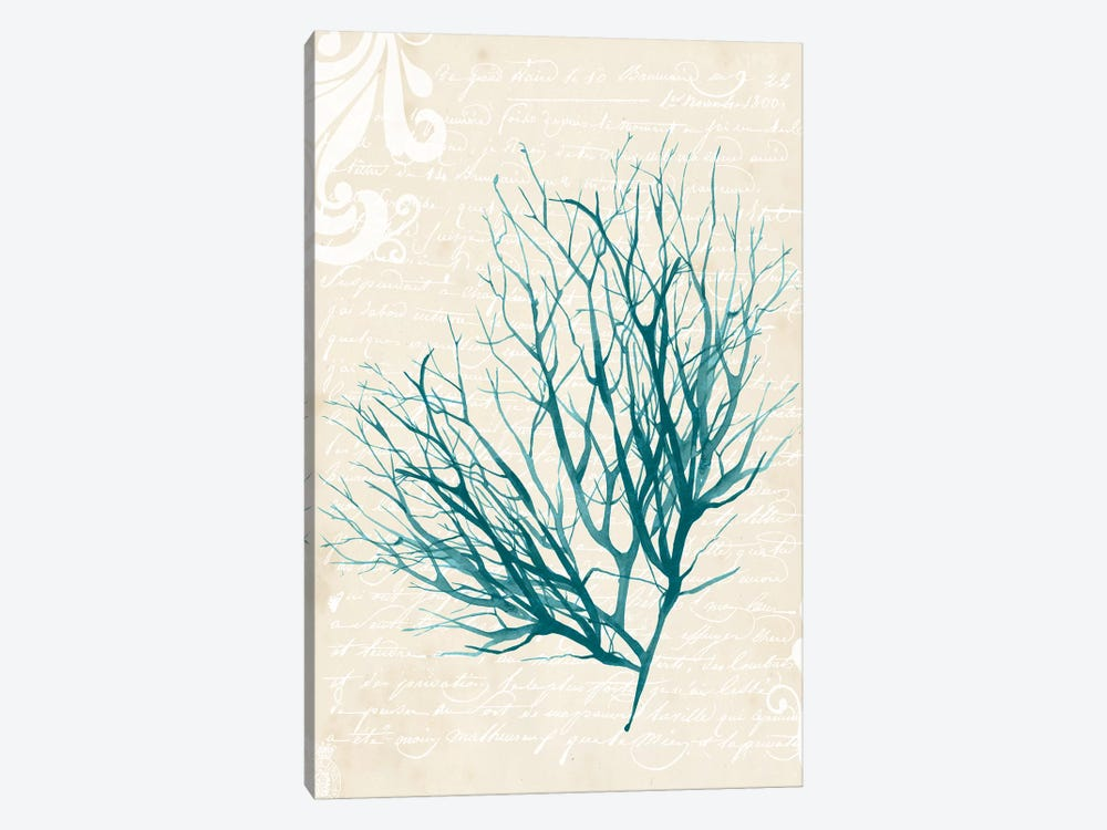 Teal Seaweed IV by Grace Popp 1-piece Canvas Art Print