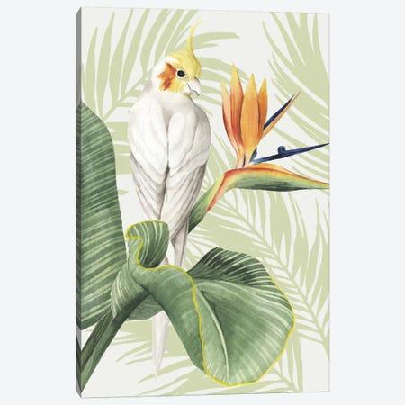 Avian Paradise II Canvas Print #POP3} by Grace Popp Canvas Artwork