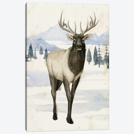 Alaskan Wilderness II Canvas Print #POP411} by Grace Popp Art Print
