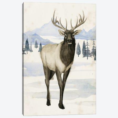 Alaskan Wilderness II Canvas Print #POP411} by Grace Popp Art Print