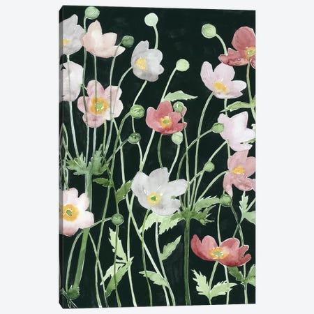 Anemone Dance I Canvas Print #POP412} by Grace Popp Canvas Art Print