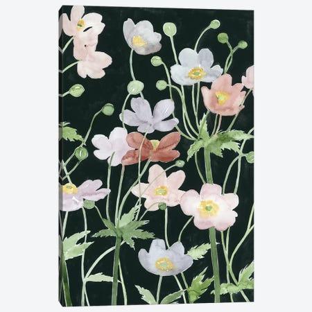 Anemone Dance II Canvas Print #POP413} by Grace Popp Canvas Print