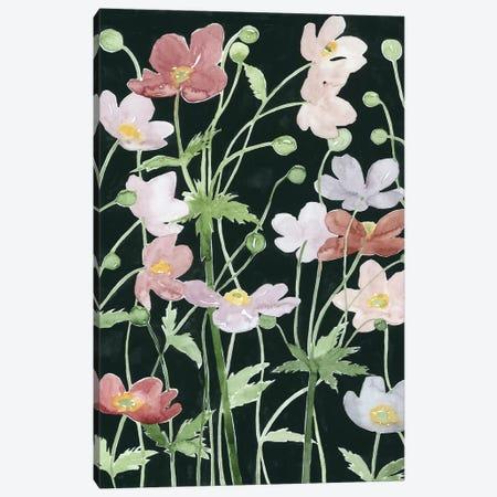Anemone Dance III Canvas Print #POP414} by Grace Popp Canvas Art