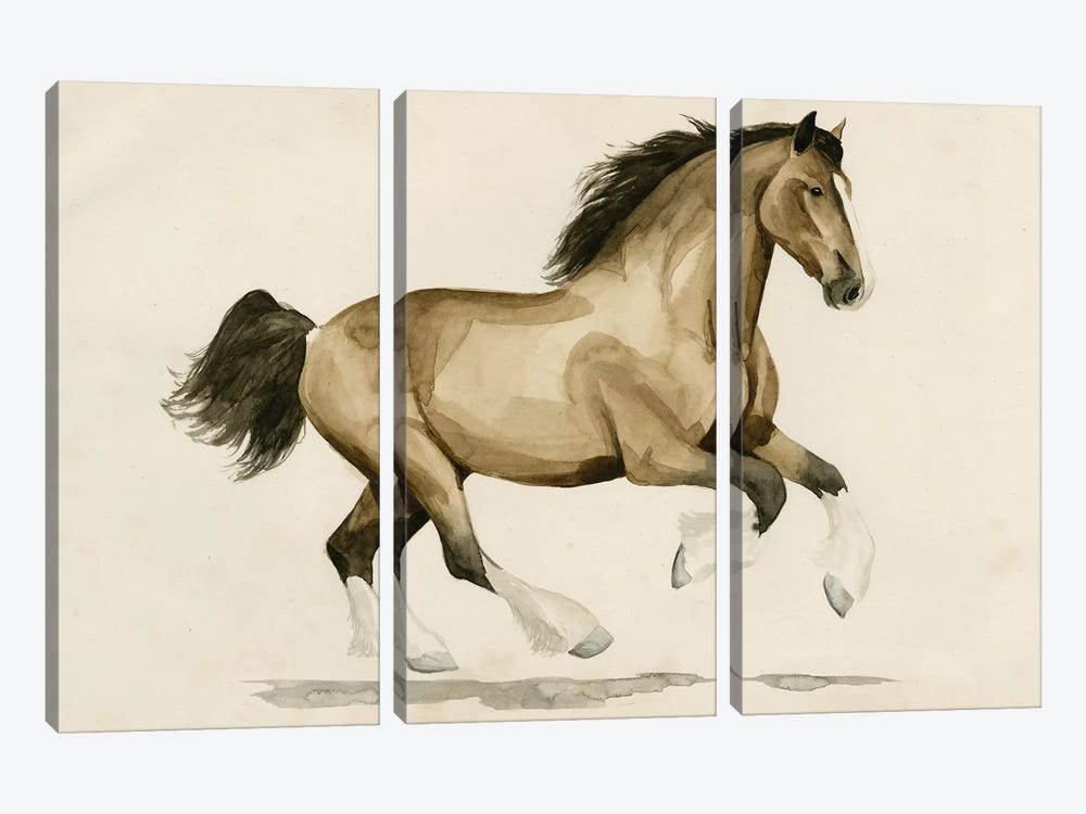 Clydesdale I by Grace Popp 3-piece Art Print