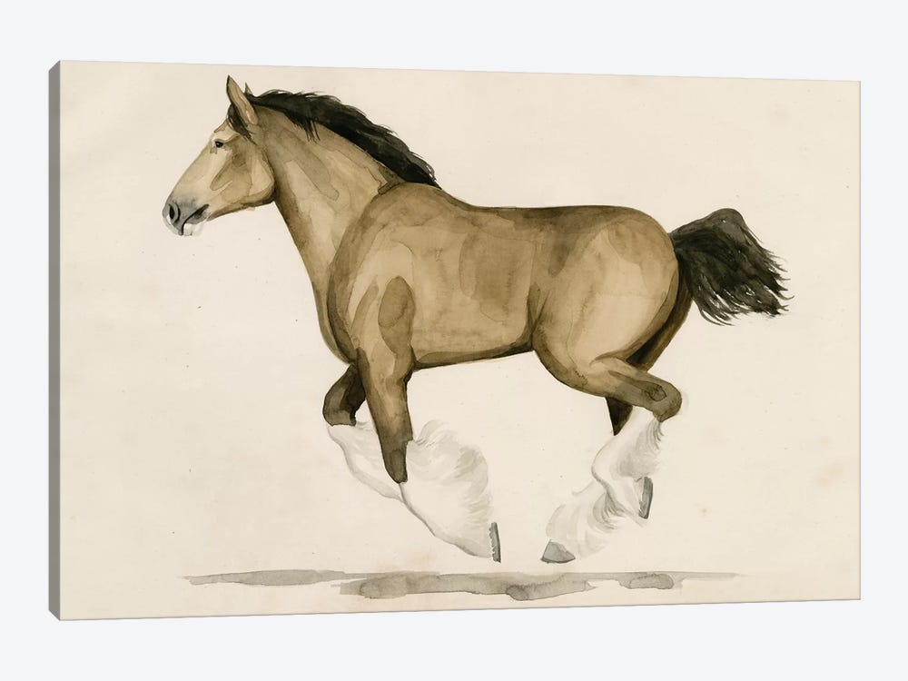 Clydesdale II by Grace Popp 1-piece Canvas Art Print