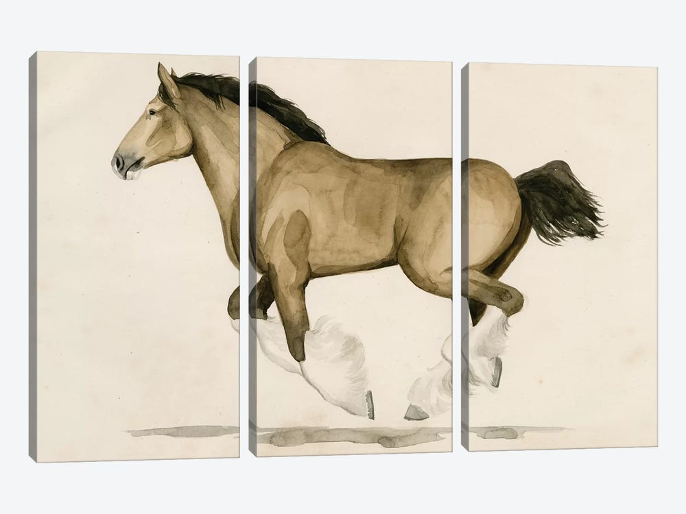Clydesdale II by Grace Popp 3-piece Art Print